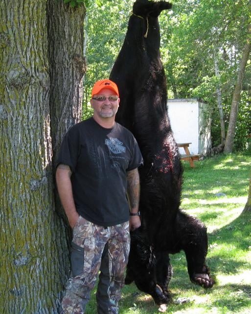 550 lb Black Bear HHR 2013
