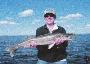 Master Angler Walleyes are popular when Fishing on Lake of the Woods: Summer or winter