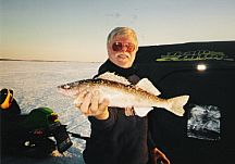 Sauger are related to Walleye: They are bountiful in the winter months