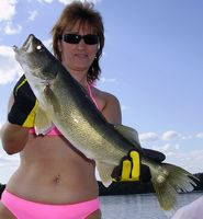 Walleye Fishing, Lake of the Woods Fishing Trips, Ontario Fishing